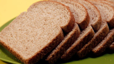 can dogs eat wheat bread