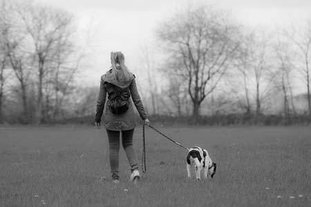 dog on leash