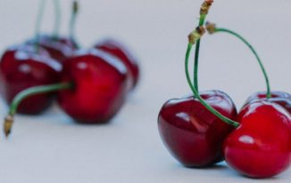 Can Dogs Eat Bing Cherries?