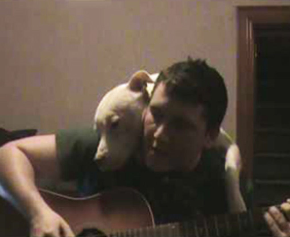 a lil ditty about doogie the pitbull fi
