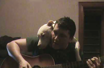 "A 'Lil ""Ditty"" About Doogie the Pitbull"